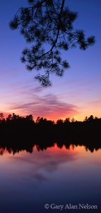 Silhouette over Loon Lake