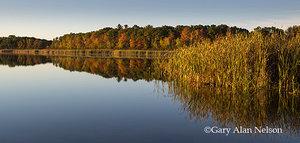 autumn,calm,lake,minnesota,reflections