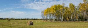 autumn,minnesota