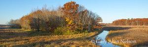 minnesota, carlos avery, creek