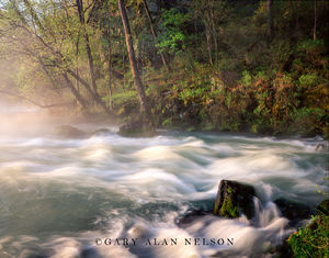 Ozark National Scenic Riverway, Missouri, spring
