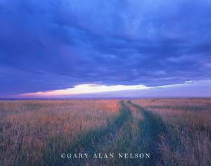Bighorn County, Montana, trail, sky