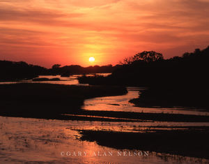 Nebraska, the platte river, sundown