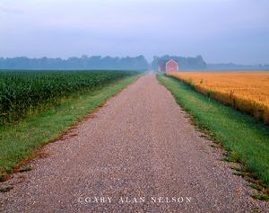 Williams County, Ohio, wheat, corn, road, barn
