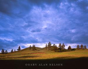 Custer State Park, Black Hills, South Dakota, hills, clouds