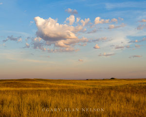Badlands National Park, South Dakota, prairie
