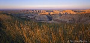 Badlands National Park, South Dakota, prairie grass