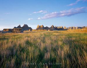Badlands National Park, South Dakota, bluestem