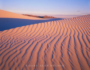 Guadalupe National Park, Texas, sand dunes