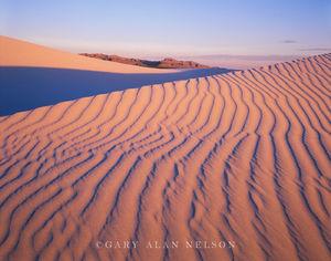 Gypsum Sand Dunes