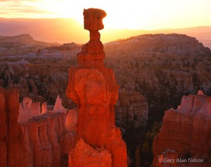 Bryce Canyon National Park, Utah, thors hammer