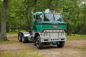 1966 Ford H Model,Ford, antique truck, vintage trucks
