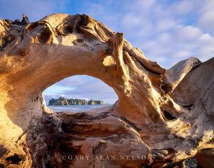 Olympic National Park, Washington, pacific ocean, ruby beach