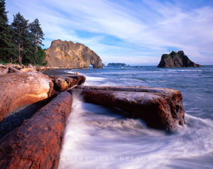 Olympic National Park, Washington, pacific ocean