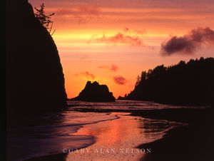 Olympic National Park, Washington, pacific ocean, seastacks