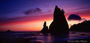 Olympic National Park, Washington, seastacks, sunset