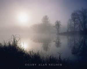 St. Croix National Scenic River, Minnesota/Wisconsin, interstate state park, fog, morning