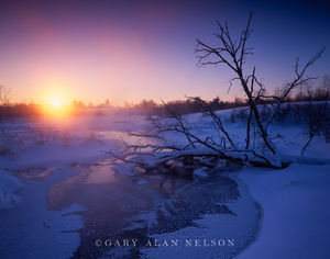 Burnett County, Wisconsin, dawn, creek