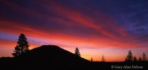 Yellowstone National Park, Wyoming, dawn