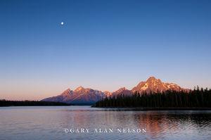 Grand Teton National Park, Wyoming, moon, jackson lake, morning light