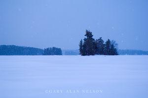 Snow Falling on Snowbank Lake