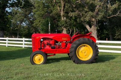 1950 Massey-Harris 44 Vineyard