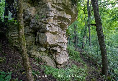Cabbage Rocks