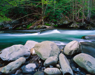 Great Smoky Mountains National Park, Tennessee, pigeon river