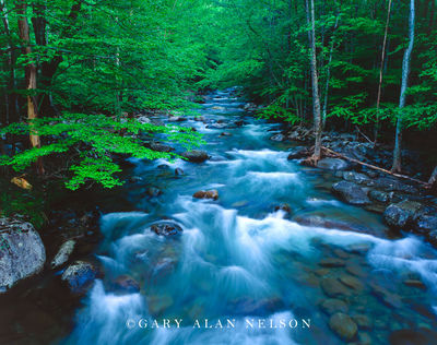 Great Smoky Mountains National Park, Tennessee, river,