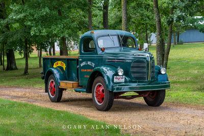 1949 REO D-19 Speed-Wagon