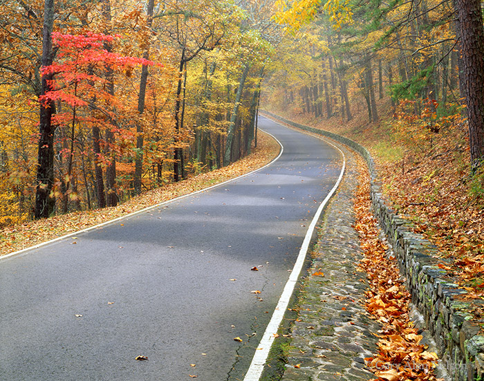 national park, hot springs, arkansas, country road, photo