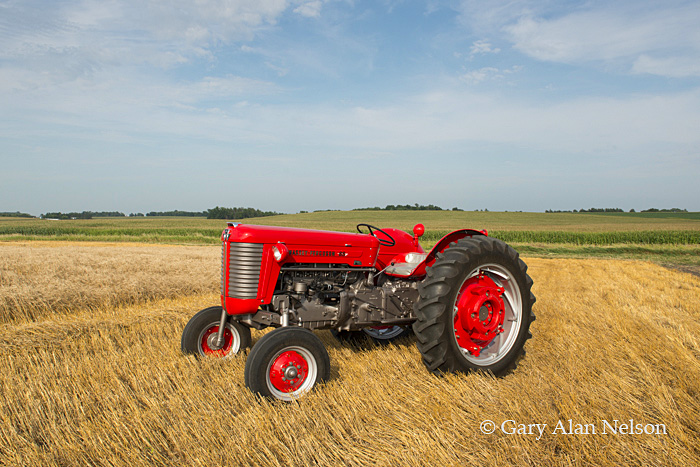 Massey-Ferguson,antique tractor, photo