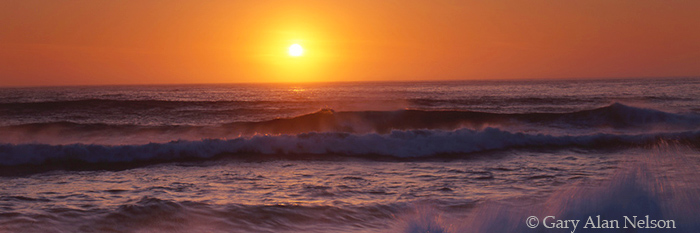 sunset, pacific ocean, california, photo