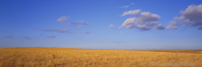 prairie, clouds, kansas, photo
