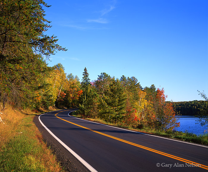 national forest, minnesota, chippewa national forest, highway 38, photo
