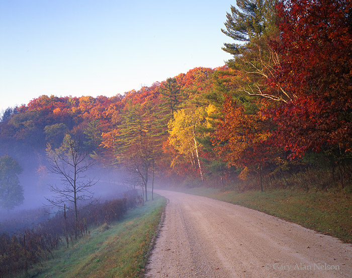 minnesota, country road, state park,, photo