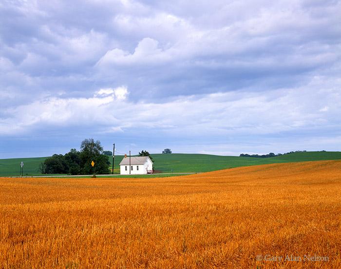 town hall, minnesota, wheat, clover, photo