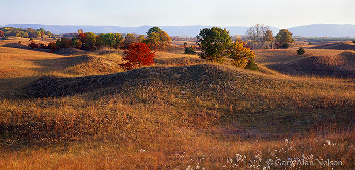 Weaver Dunes Scientific and Natural Area, Minnesota, sand hills, photo