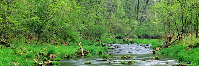 whitewater river, state park, minnesota, spring, photo