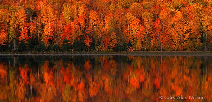 Chippewa National Forest, Minnesota, long lake, photo