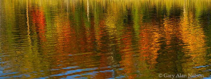 autumn, colors, reflecting, chippewa national forest, minnesota, lake, photo