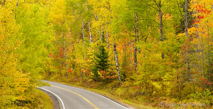 minnesota, chippewa national forest, highway 38, national scenic highway, photo