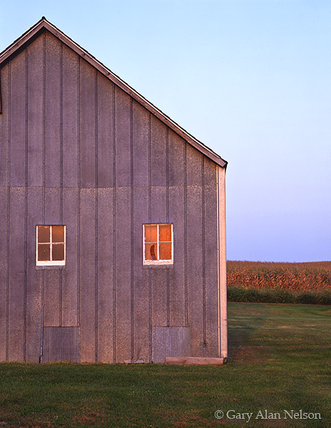 barn, tin, minnesota, photo