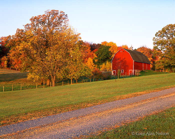 MN-92-83-FM Red rural barn and fall foliage in Washington County, St. Croix River Valley, Minnesota.