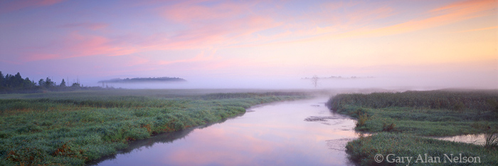 minnesota, sunrise river, carlos avery, wildlife area, fog, photo