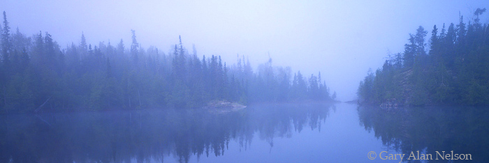 MN-93-71P-SC Fog and pines on Seagull Lake, Boundary Waters Canoe Area Wilderness, Minnesota