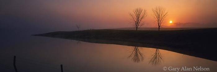 sunrise, minnesota, trees, photo