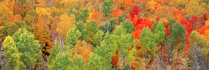 superior national forest, tettegouche, minnesota, sawtooth mountains, photo