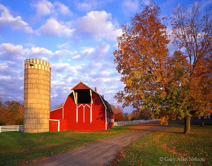 barn, drive, skies, rural, farm, photo