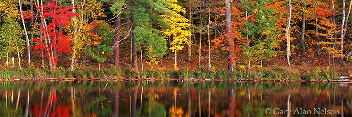 loon lake, minnesota, savannah portage, state park, reflections, photo